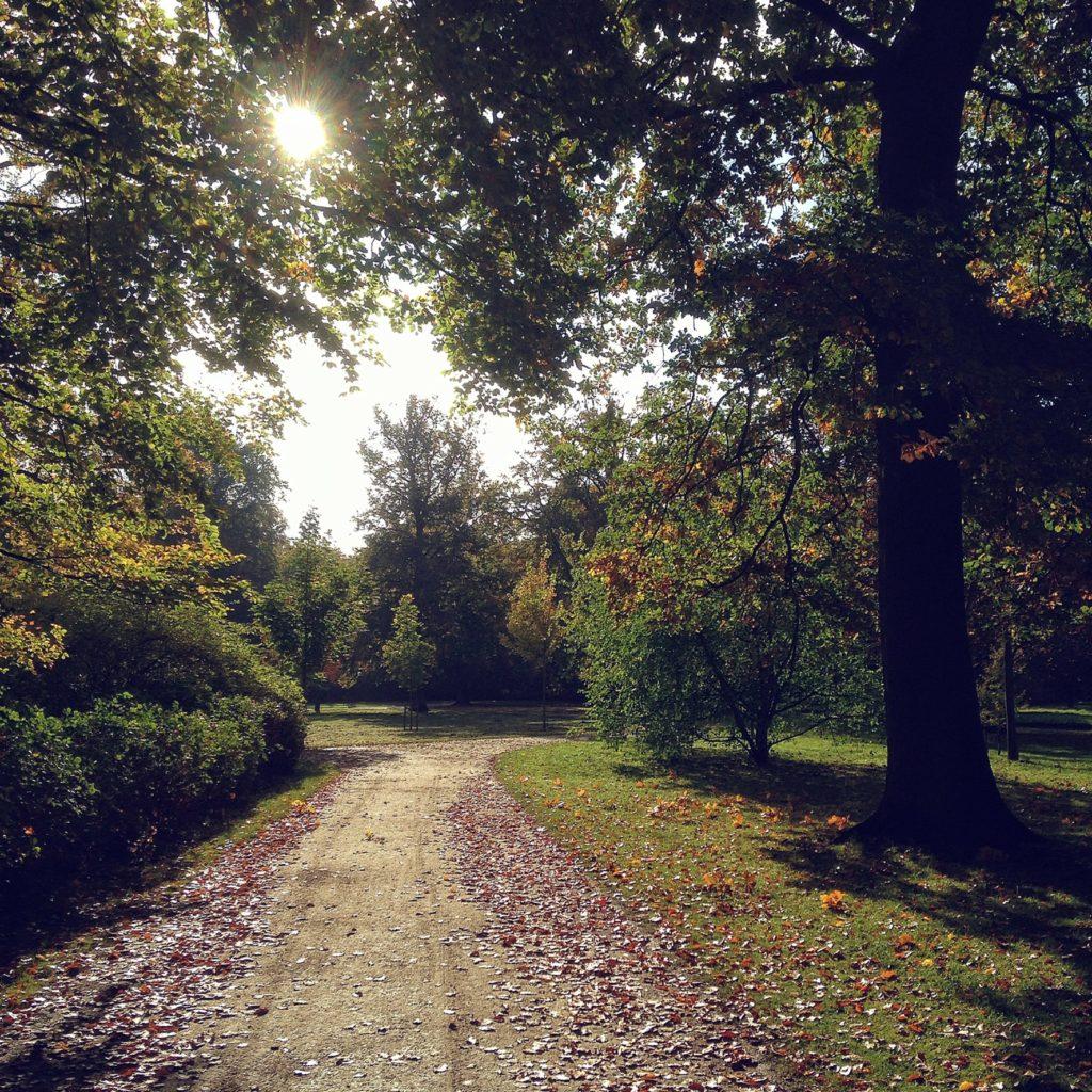 Efterårsferiefornemmelser